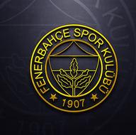 Fenerbahçe'nin 10 numara transfer adayları
